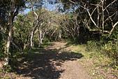 小百岳都蘭山:步道一景