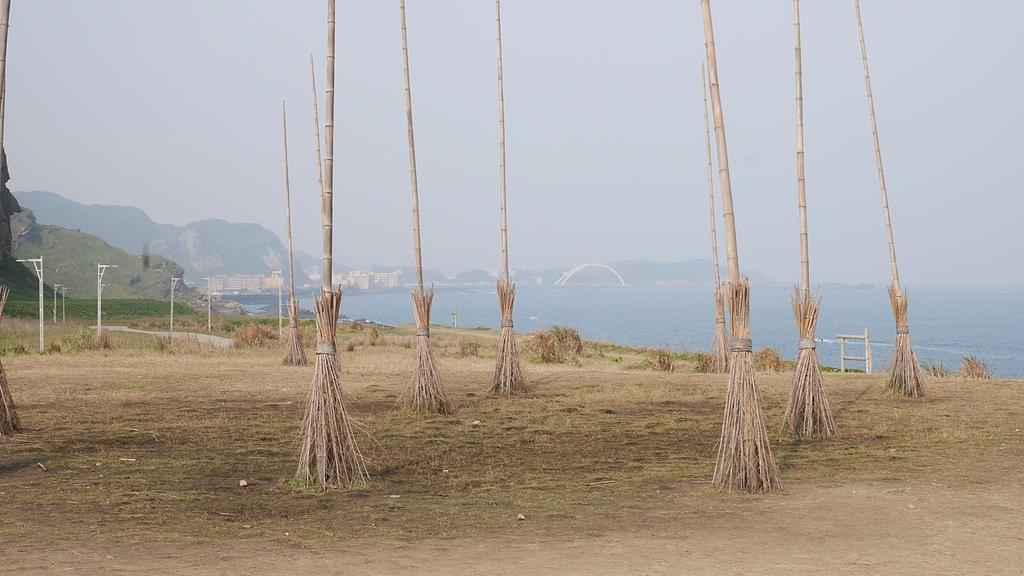 飛天掃把 - 潮境公園 望幽谷