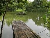 台北園外園・準園:準園08生態池2.jpg