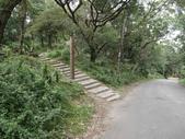南港山峭壁總覽:09左上階梯往虎山.jpg