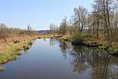 本拿比湖公園(Burnaby Lake Regional Park):03本拿比湖一隅.JPG