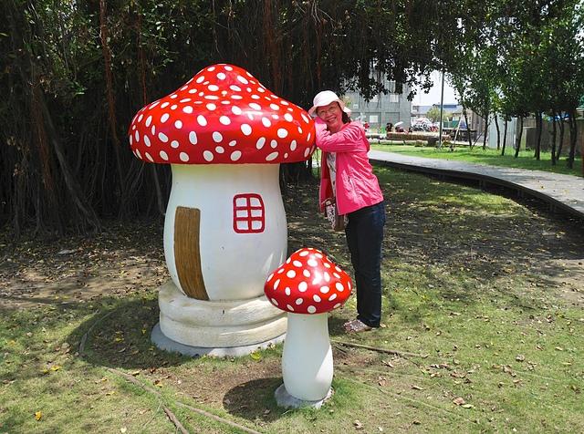 28可愛的蘑菇.jpg - 北門水晶教堂