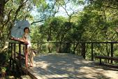 金瓜寮溪魚蕨步道:觀景台
