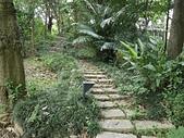 台北園外園・準園:準園05森林步道.jpg