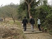 新竹五指山大分林山:大分林山登山步道.jpg