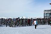 滑雪勝地惠斯勒:以雪橇及滑雪板打造的樹林