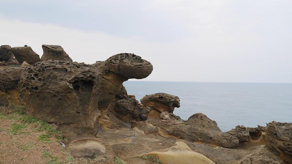 36造型各異的蕈狀石2.jpg - 港仔尾山 象鼻岩 蕃仔澳山