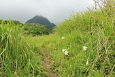 蘭嶼紅頭山(小百岳#97):03紅頭山步道眺望相愛山.jpg