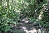 小百岳都蘭山:拉繩陡上