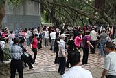 虎頭山公園賞蝶:榕樹園--舞蹈教學