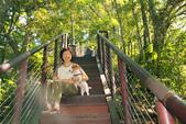 金瓜寮溪魚蕨步道:更陡的階梯