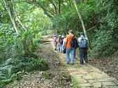 大湖公園白鷺鷥山:07白鷺鷥山步道1.jpg