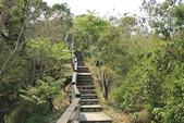台東鯉魚山:鯉魚山登山步道