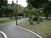 大鶯景觀自行車道:08三鶯單車道一景3.jpg