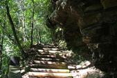 金瓜寮溪魚蕨步道:圓木階梯