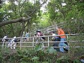 大湖公園白鷺鷥山:08白鷺鷥山步道2之字形迂迴上攀.jpg