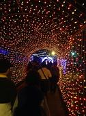 2013台北燈會:IMG_0120.jpg