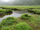 松蘿湖(二):06松蘿湖蜿蜒水道2.jpg