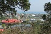 台東鯉魚山:鯉魚山遠眺太平洋,近處為體育館及台東大學校園。