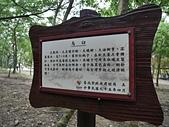 大直雞南山自然園區:雞南山公園14.jpg