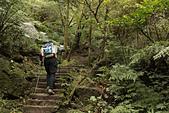 平溪孝子山慈母峰:孝子山的石階步道
