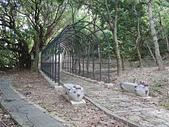 大直雞南山自然園區:雞南山公園11.jpg