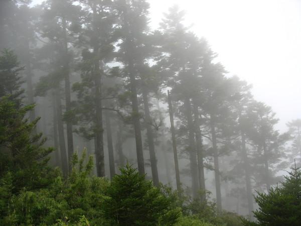 28.JPG - 郡大山
