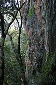 小百岳都蘭山:大石壁2