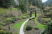 布查花園(Butchart Gardens):深坑花園1