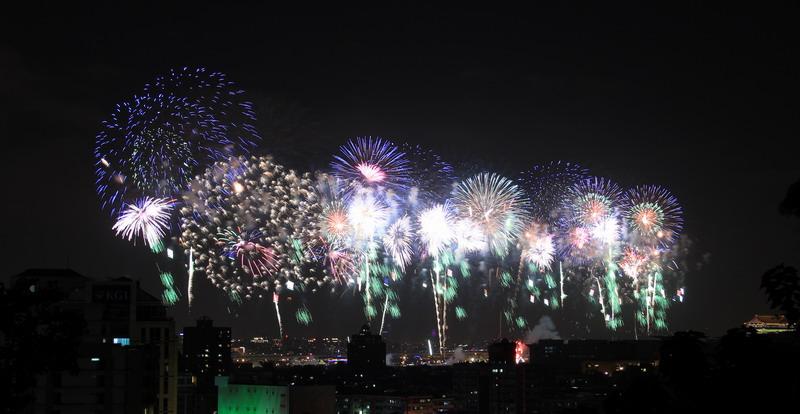 劍南蝶園跨年煙火:花博大佳園區的煙火1