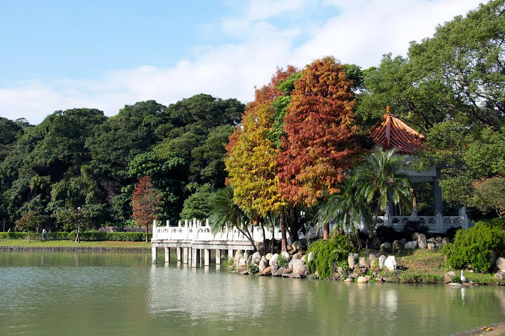 碧湖公園:
