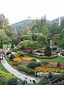 布查花園(Butchart Gardens):Sunken_Garden