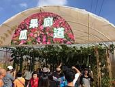 2015新社花海:05瓜果廊道.jpg