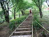 山中湖五城山:太01.jpg