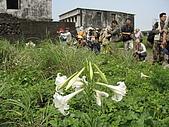 龜山島:一枝十朵