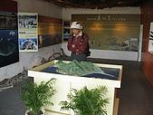 龜山島:生態館