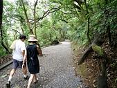 天母古道登紗帽山:10天母古道一景3.jpg