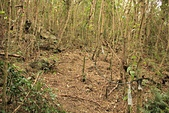 台東石頭山:石頭山06.JPG