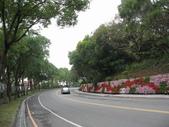 八卦台地基點巡禮:漂亮的車道