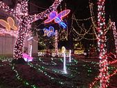 2013台北燈會:IMG_1748.jpg
