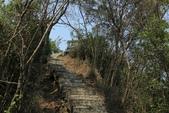 台東鯉魚山:鯉魚山背嶺觀景台