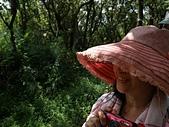 冷水山大尖後山翠翠谷:09停在山客帽沿上的竹節蟲.jpg