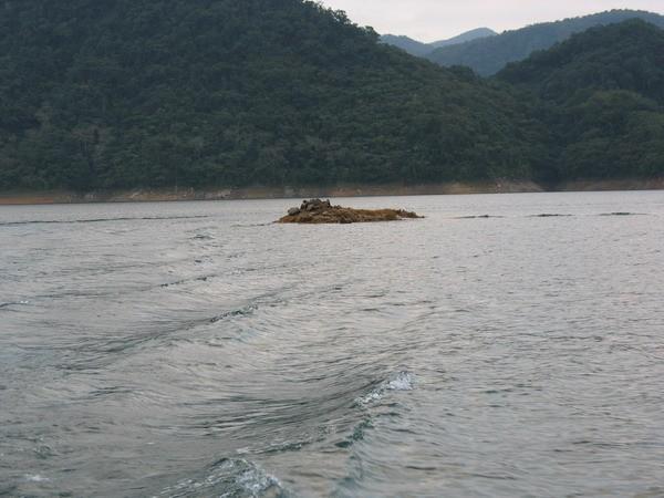 採石遺跡 - 翡翠水庫的山光水色