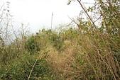 台東石頭山:石頭山基石就在鐵杆下方
