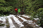 寶雲島迦納山(Mt Gardner of Bowen Island):步道上的積雪