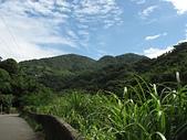 坪頂古圳:藍天綠野