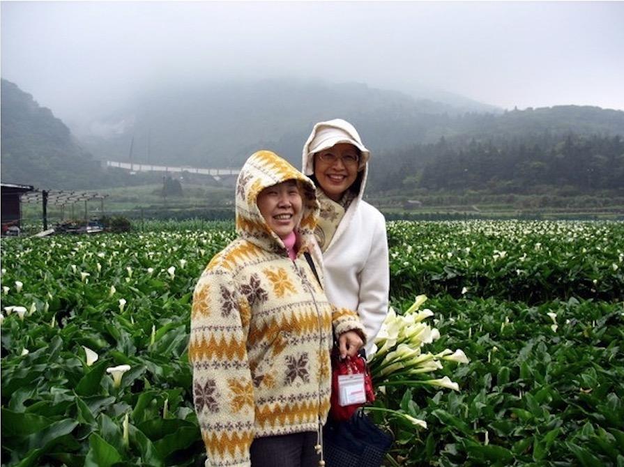 4寒雨中的竹子湖海芋.jpg - 日誌用相簿