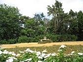 大湖公園白鷺鷥山:11白鷺鷥山圖根點.jpg