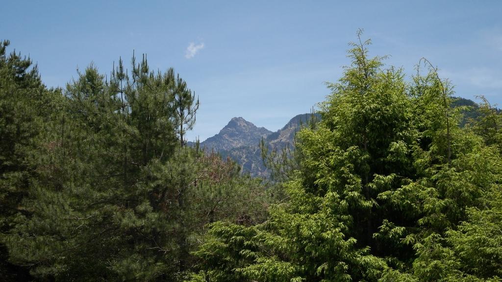 19塔塔加遊客中心所見的玉山主峰.jpg - 麟趾山步道