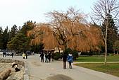 史丹利公園(Stanley Park):公園一景
